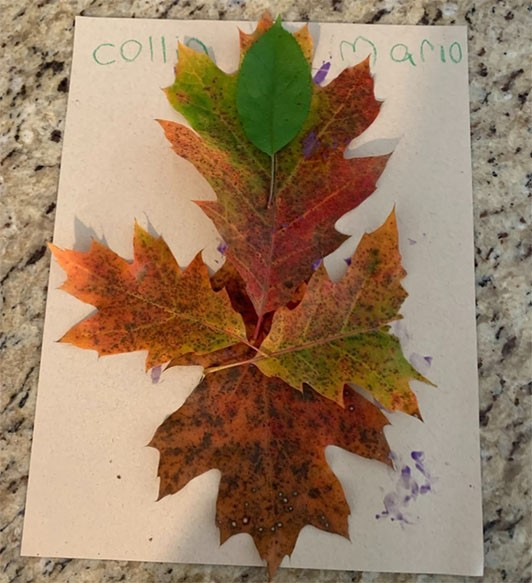 Collage of a figure made from leaves of a variety of colors.