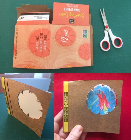 Three images, one of a seltzer box and a pair of scissors, another where the box has been turned into a book where a flower shape has been cut out of the cover, and the third image shows a drawing of wild columbine flowers behind the flower cut-out.